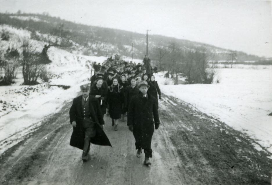 Евакуація в Карпатській Україні