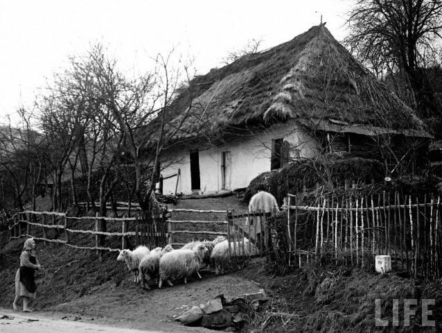 Хата у гірській частині Закарпаття, 1939