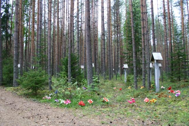 Розстрільні ями в урочищі Сандармох місцеві мешканці позначили штучними квітами