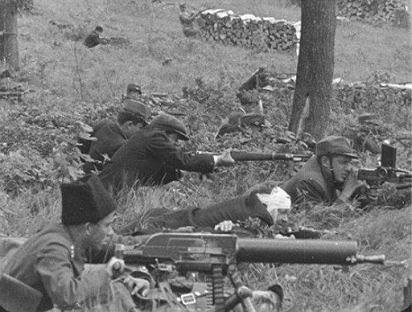 Полковник Армії УНР Сергій Єфремов: спогади про Карпатську Україну