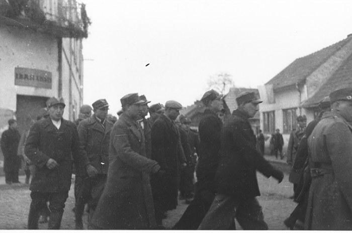 Василь Ґренджа-Донський про 9 березня 1939