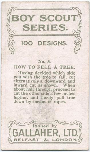Цікаві поради: як зрубати дерево