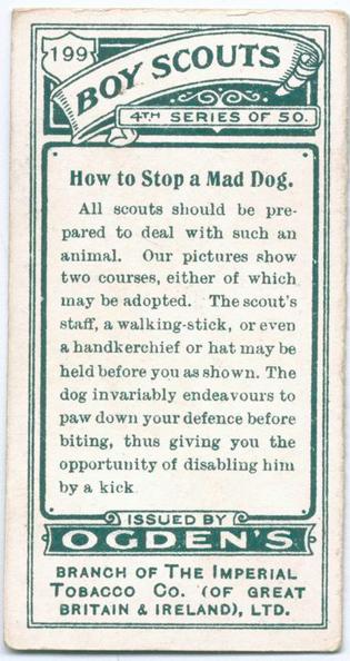Цікаві поради: як відігнати скаженого пса