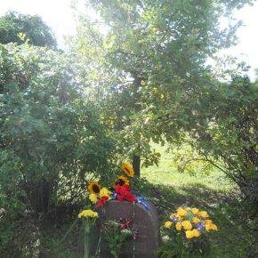 Шевченківський дуб та пам'ятний камінь в Таллінні
