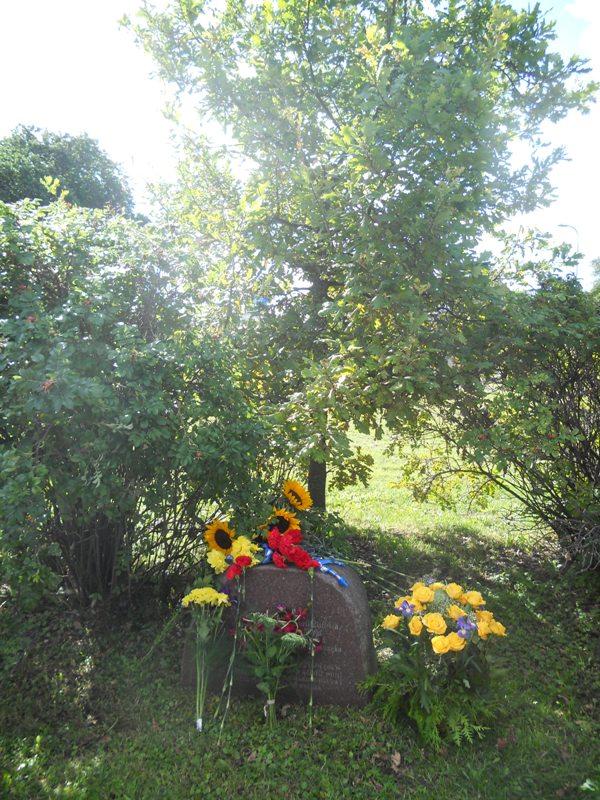Збір коштів на пам`ятник Тарасові Шевченку в Таллінні