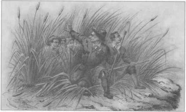 Пластуни. Літографія художника Н. Берзе, 1858