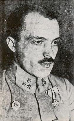 Вітовський Дмитро, полковник УГА, творець Листопадового Чину