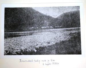 Пластовий табір на р. Уж, 1925