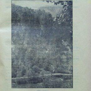 Журнал Пластун, ч. 4-5, 1929