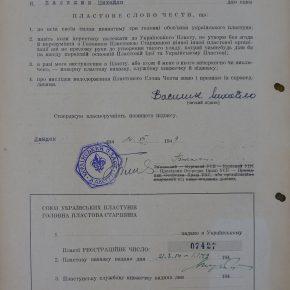 Михайло Василик - карта впису